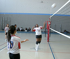 The 2013 SHS girls' volleyball team is looking to achieve great things in the season ahead.
